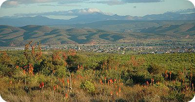Oudtshoorn is an inland town of the Garden Route and the Largest town in the Klein Karoo