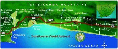 Tsitsikamma National Park with loads of activities. You are sure not get board while staying at Tsitsikamma
